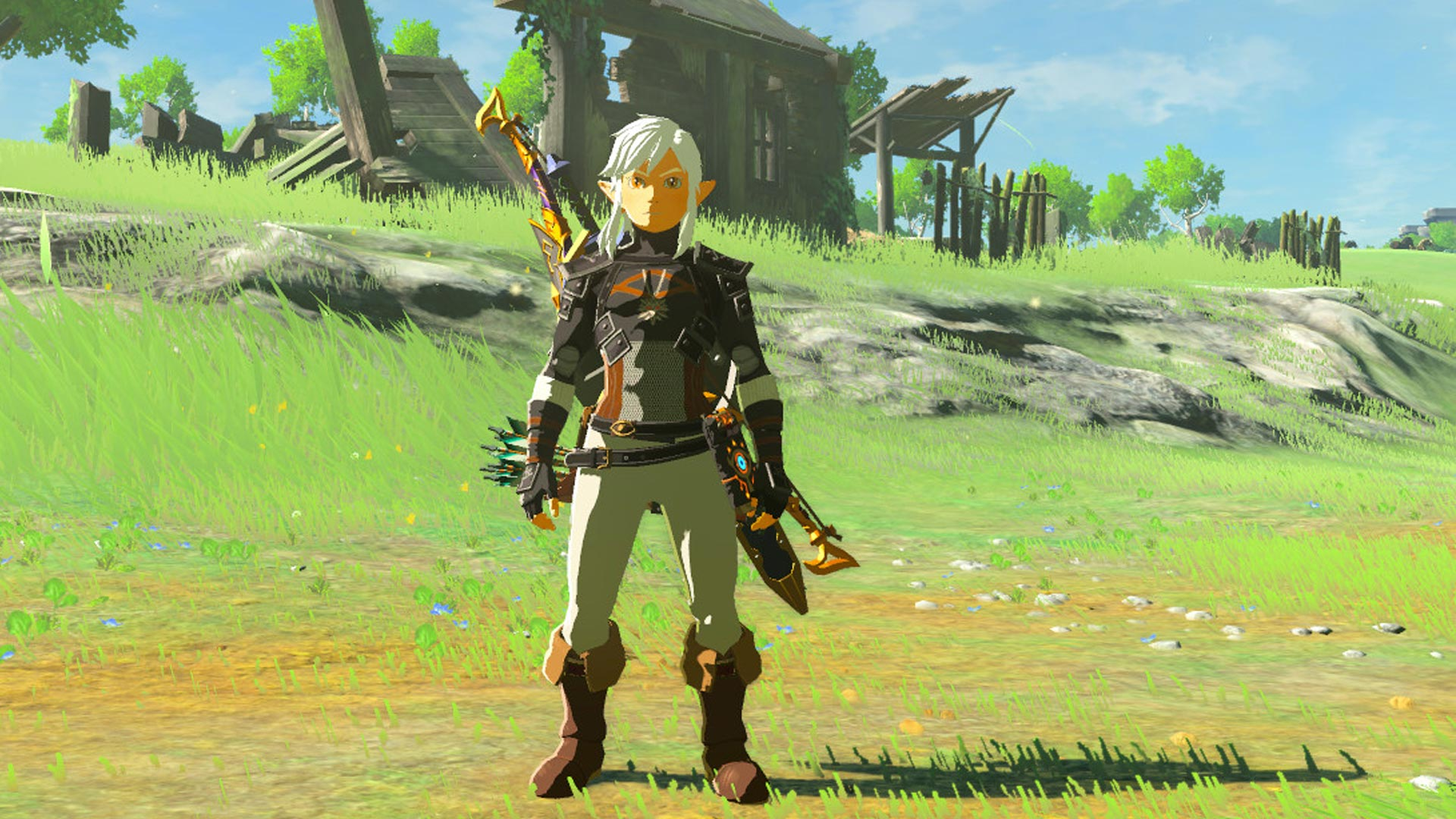 The Legend of Zelda: Breath of the Wild The Witcher Mod