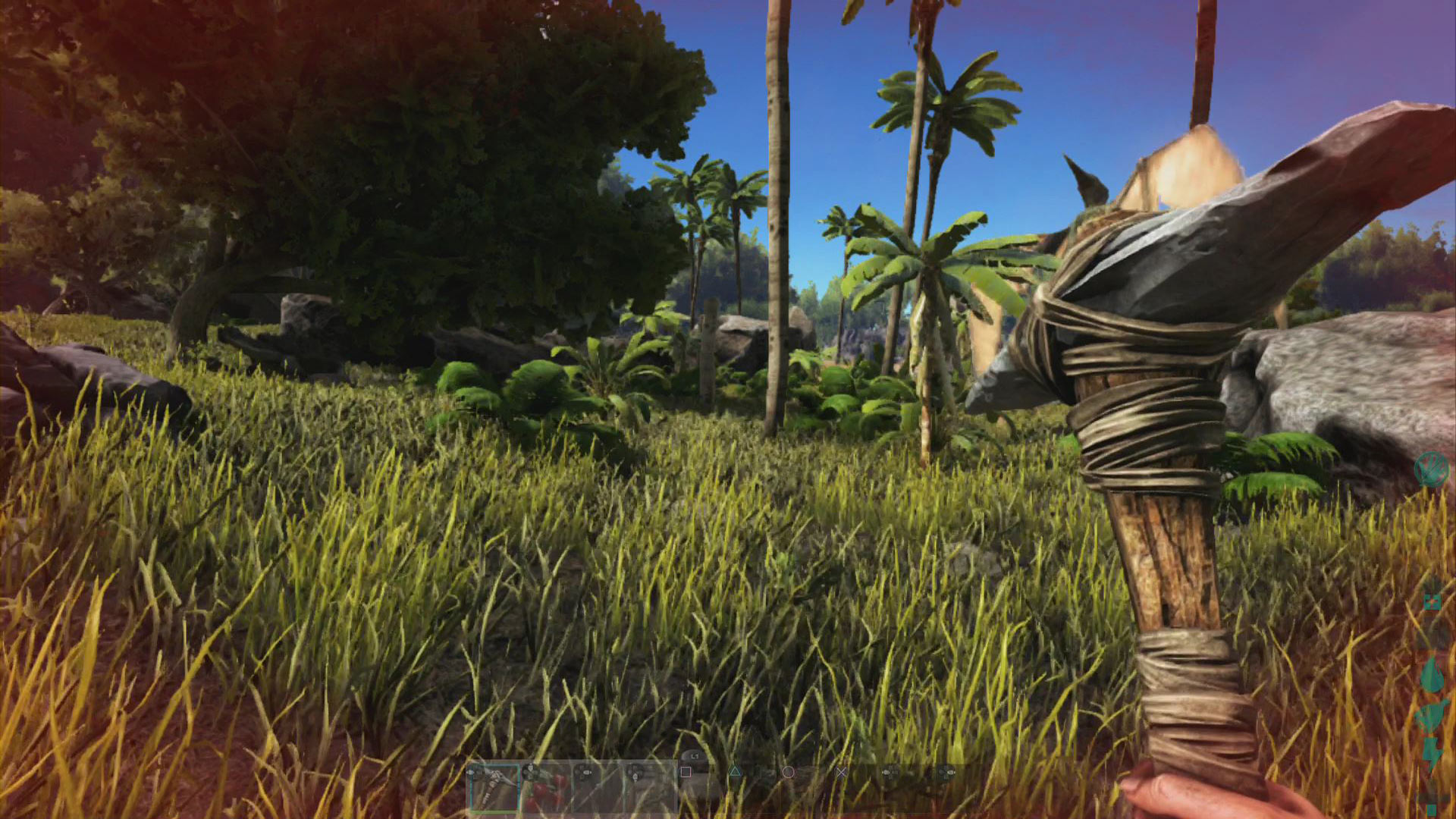 Ark: Survival Evolved Playstation 4