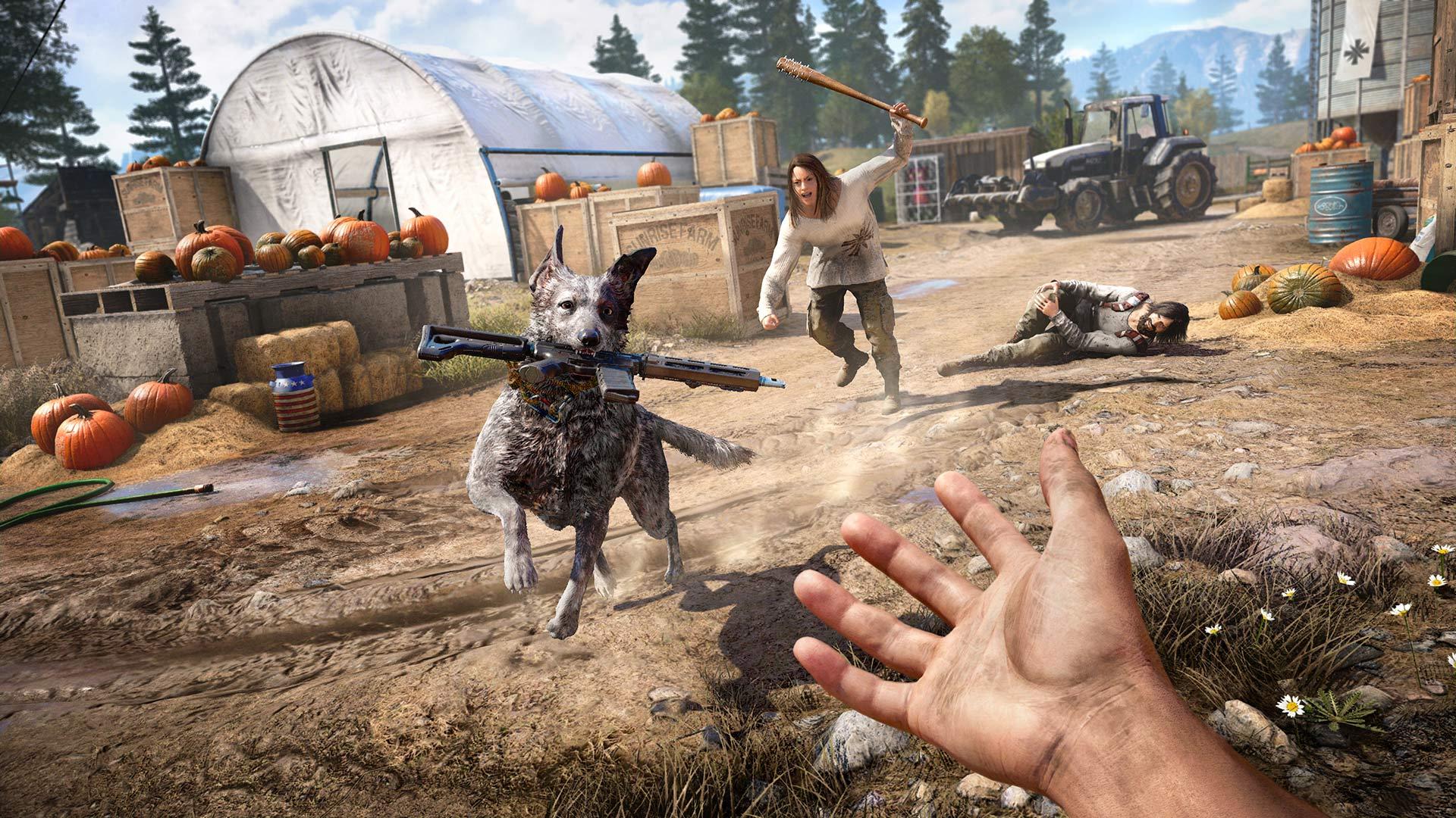 Far Cry 5 Playstation Screenshot