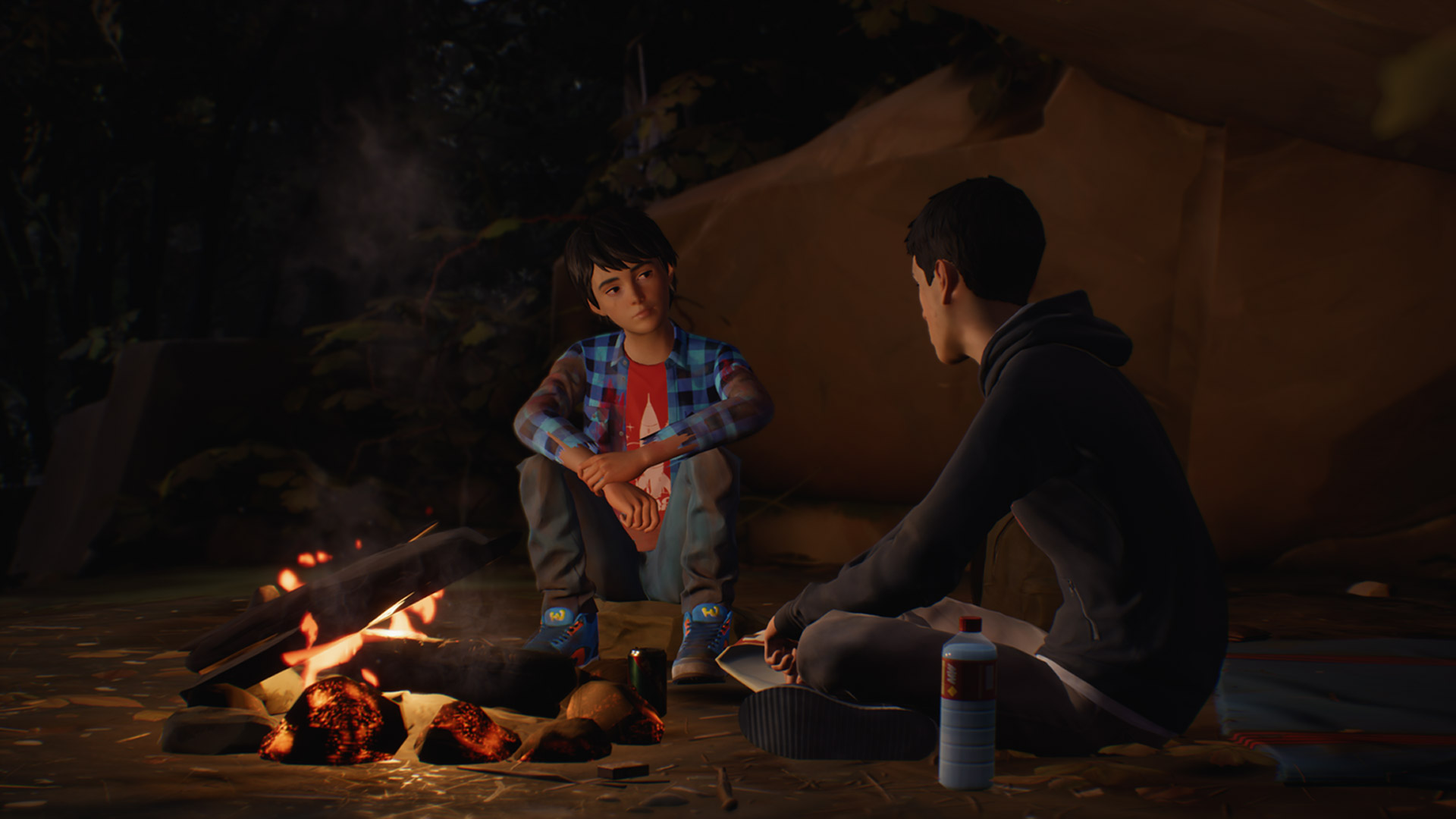 Life is Strange 2 Episode 1: Roads Screenshot
