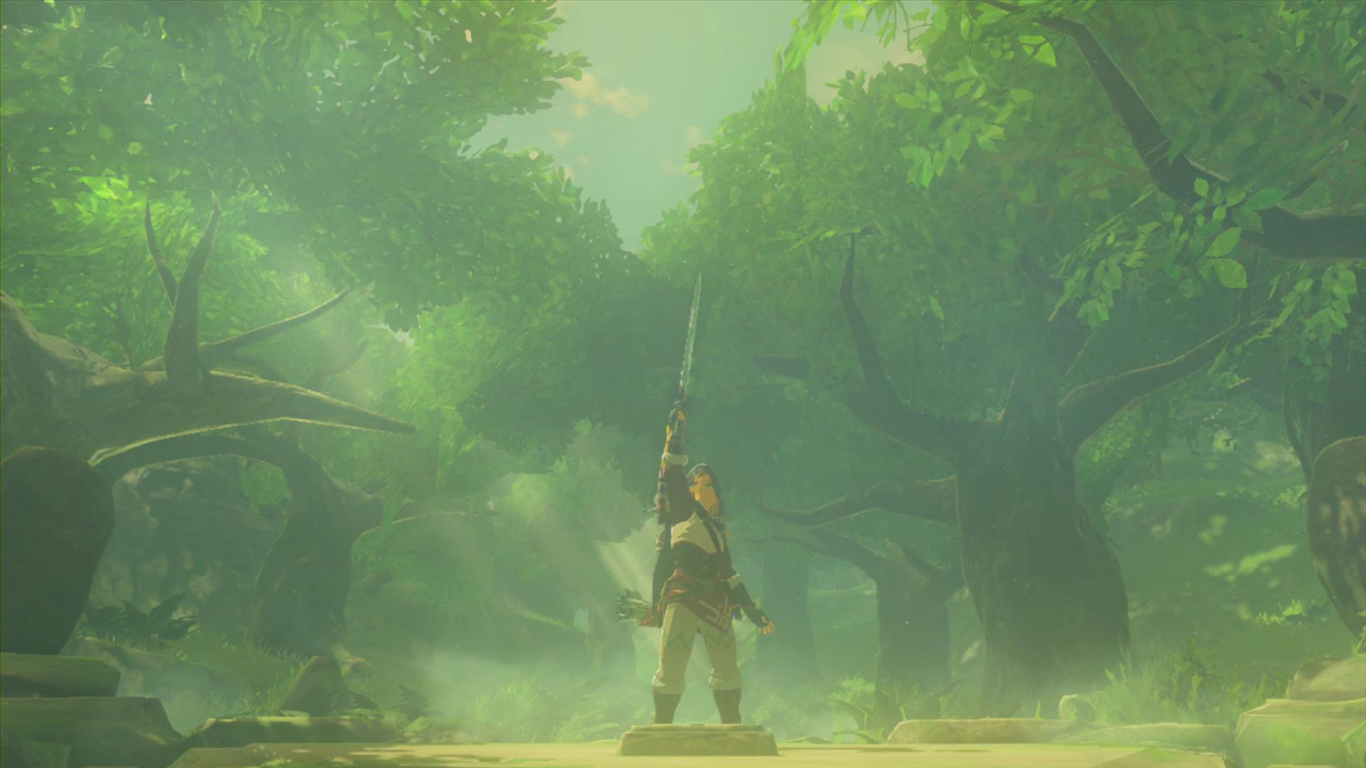 The Legend of Zelda: Breath of the Wild WiiU Screenshot of Master Sword Link
